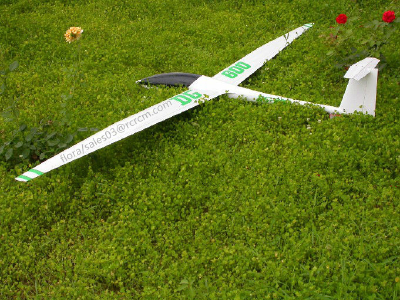 DG600-3.4m scale glider of RCRCM