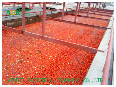 Turn key solution for automatic tomato paste machinery